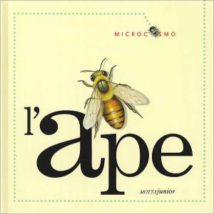 Microcosmi per i pi piccoli for Immagini api per bambini