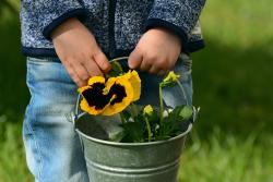 bambini fiori gentilezza