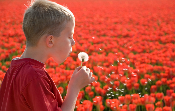 autismo bambino tulipani
