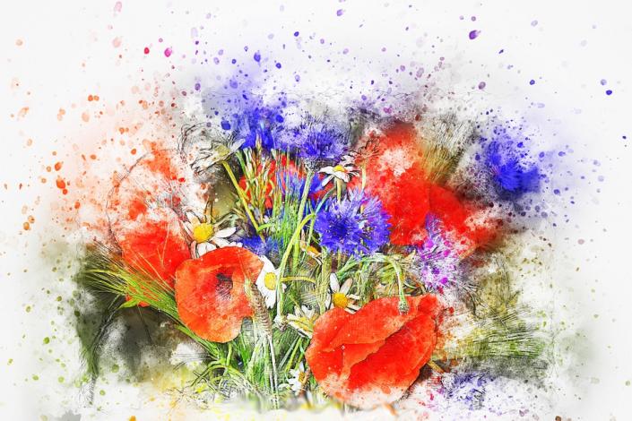 mazzolino di fiori papaveri primavera
