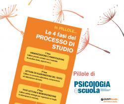 pillola PS le 4 fasi del processo di studio
