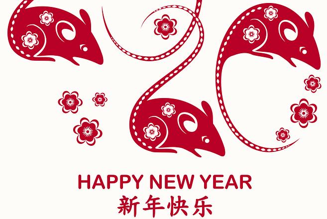 2020 anno del topo calendario cinese