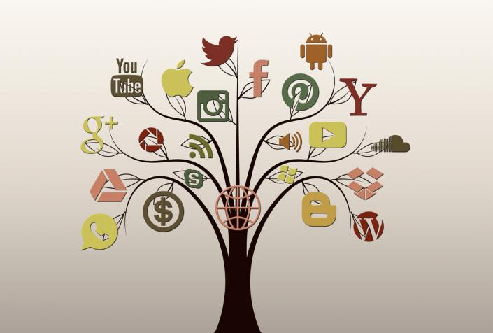 social media albero