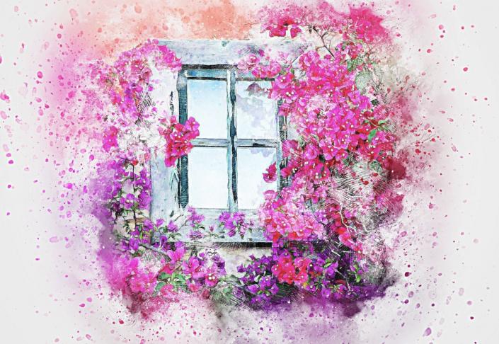 finestra fiori
