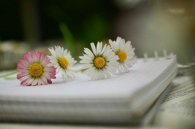 quaderno poesia fiori