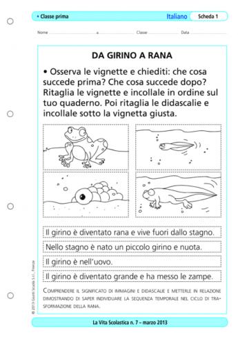 Gl Gn Sc La Vita Scolastica